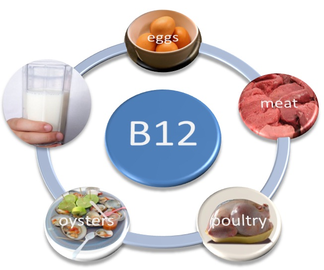 Here are some vitamin b12 food sources.